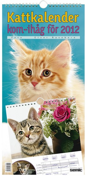 Kattkalender - kom-ihåg för 2012