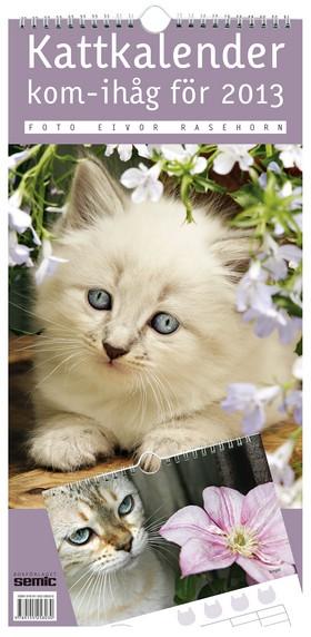 Kattkalender – kom-ihåg för 2013