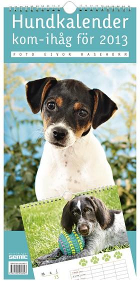 Hundkalender – kom-ihåg för 2013