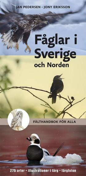 Fåglar i Sverige och Norden - fälthandbok för alla