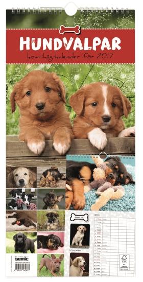 Hundvalpar kom-ihåg-kalender 2017