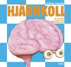Hjärnkoll - så funkar synen och medvetandet
