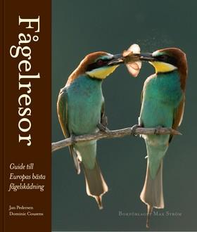 Fågelresor - Guide till Europas bästa fågelskådning