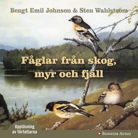 Fåglar från skog, myr och fjäll
