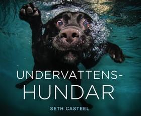 Undervattenshundar