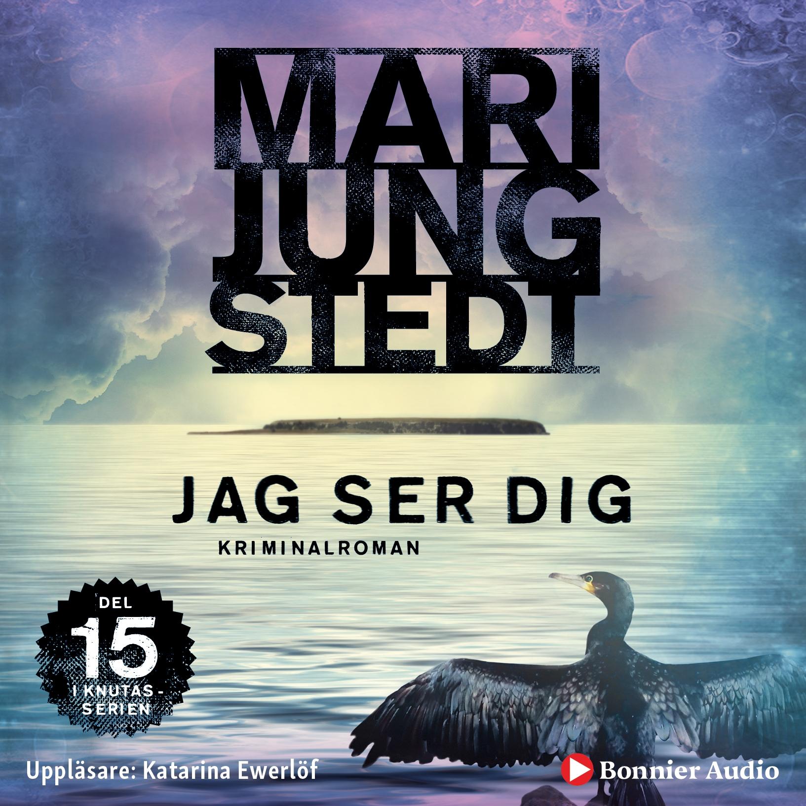 Jag ser dig - Maria Jungstedt