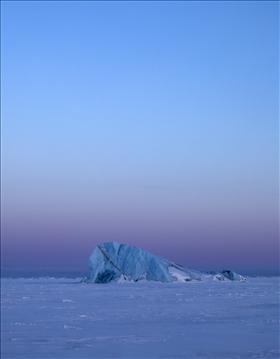 Bortom isbjörnens rike